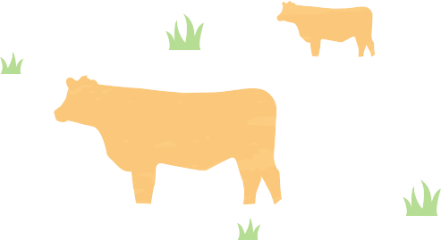 biltong cow and grass
